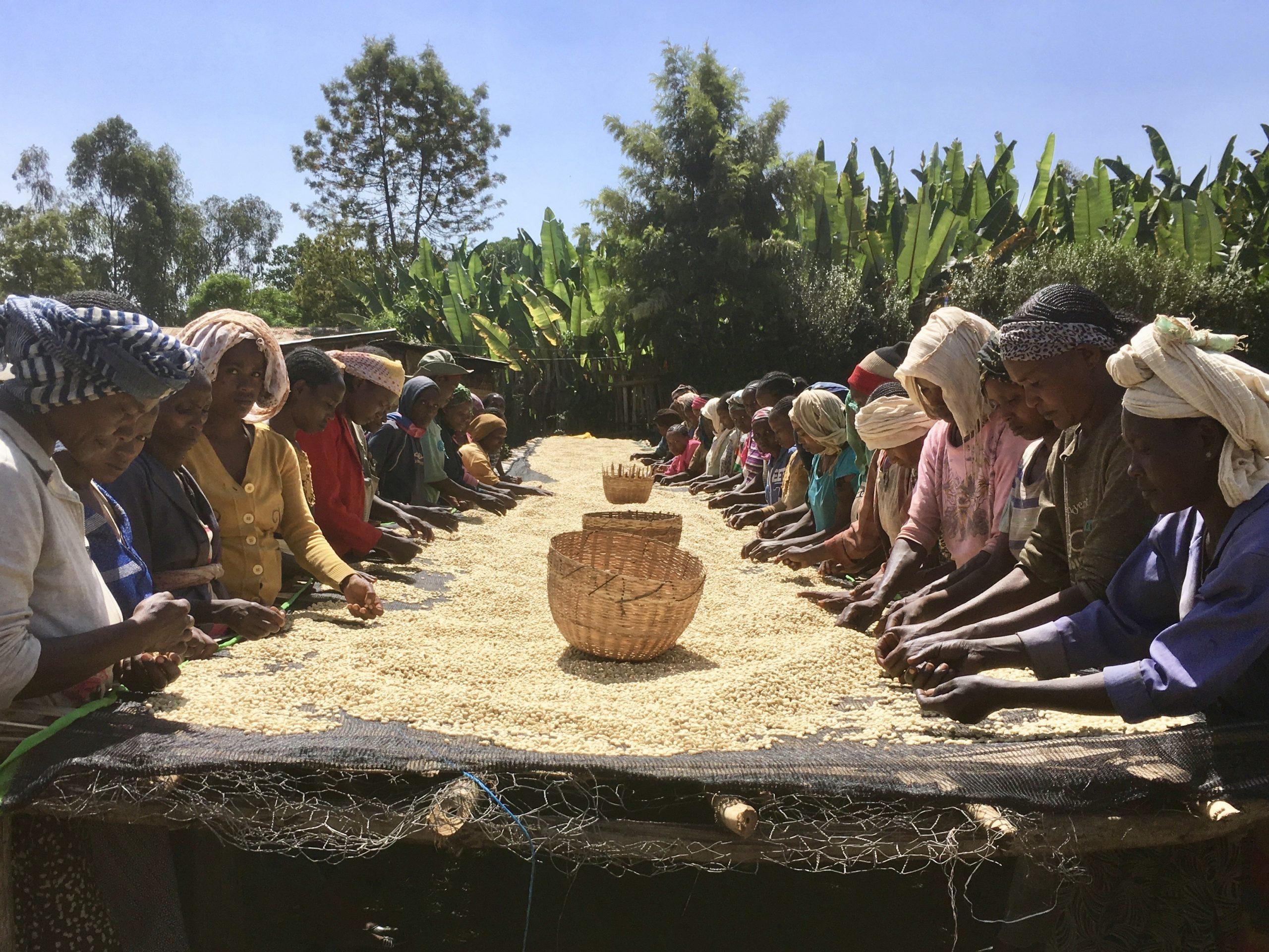 Äthiopien Trip – Eine Reise in den Ursprung des Kaffees